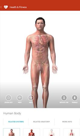 MSN Health & Fitness- Workouts 1.2.0 screenshot 18585