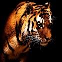 3D tiger 3 logo