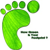 Green Footprint Calculator