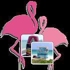 Florida Memory Game icon