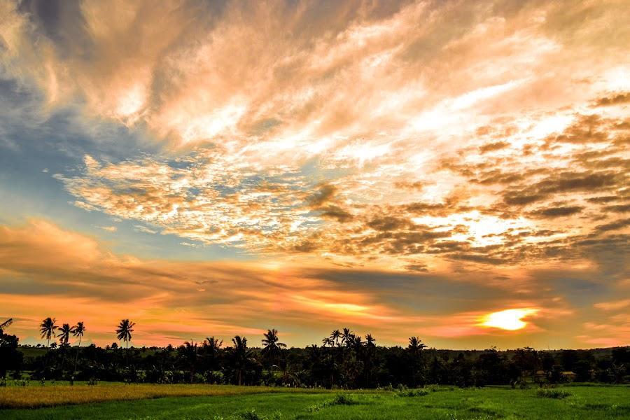 hijau dan senja by Muh Chaerum - Landscapes Sunsets & Sunrises