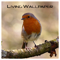 A Living Wallpaper - Robin icon