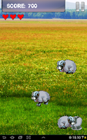 Screenshot of Sheep Game for Android