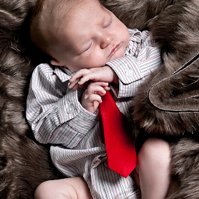 Baby Business Man by Joe Eddy - Babies & Children Babies ( corprate, tie, collar, fur, baby, newborn )