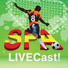 Spanish La Liga 2011/12 icon