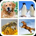 Animal Sounds - Ringtones icon