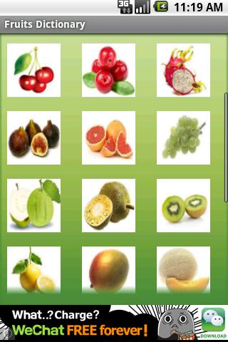 Fruits Dictionary Free