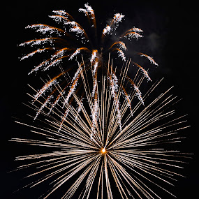NIGHT LIGHTS by Bethany Kenney - Public Holidays July 4th ( fireworks, night )