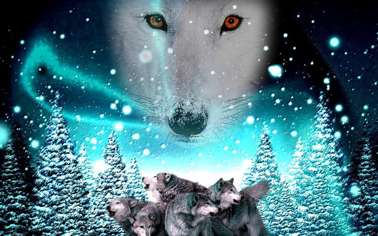 3d wolf wallpaper android apps on google play for Fond ecran pc 3d