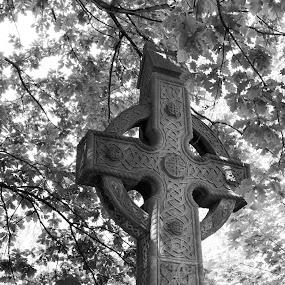 Celtic cross by Christine Schmidt - City,  Street & Park  Cemeteries ( abney park cemetery, london, leica, cross )