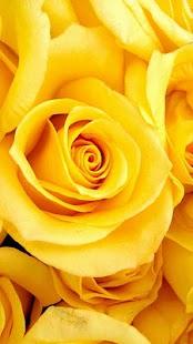 زهور جميلة اللغز لعبة! لعبة- screenshot thumbnail
