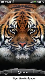 Tiger Live Wallpaper - screenshot thumbnail
