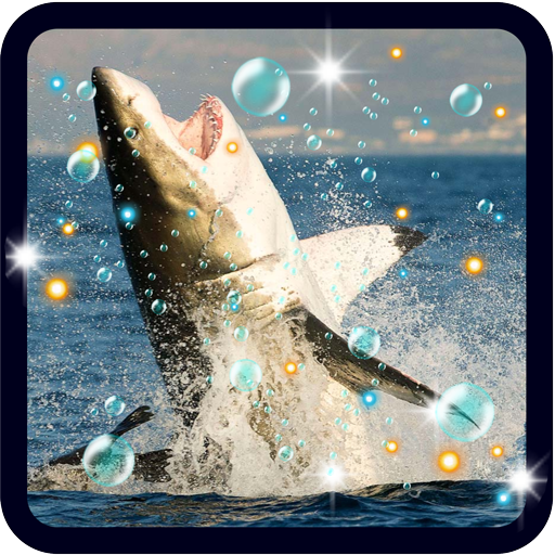 Danger Sharks live wallpaper LOGO-APP點子