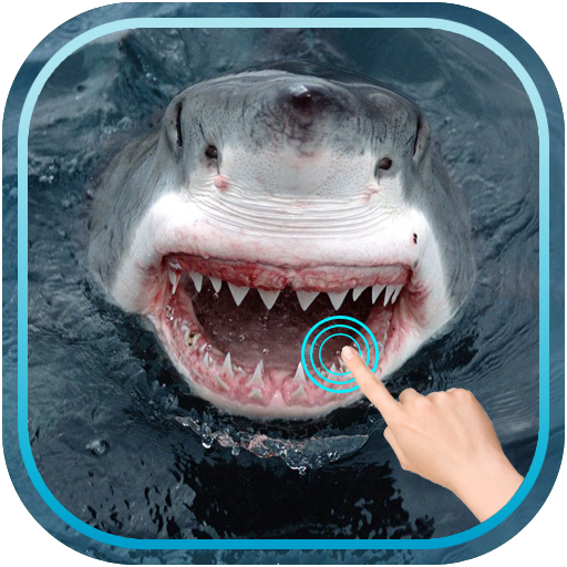 Magic Touch Shark Attack 娛樂 App LOGO-APP試玩
