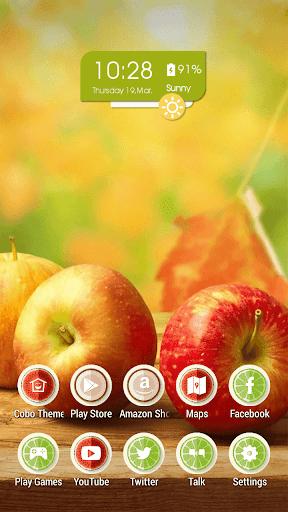 多汁的水果蘋果健康主題