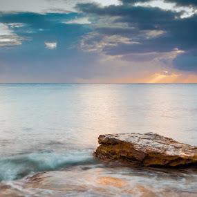 Young Light by James Vodicka - Landscapes Waterscapes ( water, waves, d5200, ocean, beach, seascape, landscape, coastal, dawn, nature, australia, manly, sunrise, nikon, sydney )