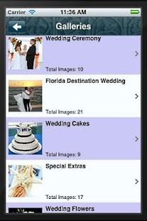 Florida Weddings Online - screenshot thumbnail