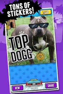 Snoop Lion's Snoopify! - screenshot thumbnail