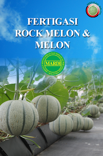 MARDI Fertigasi Melon