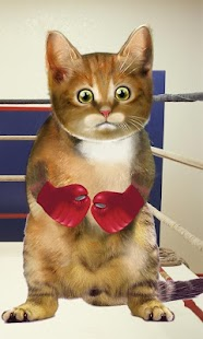 Boxing Cat - screenshot thumbnail