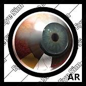 EyeSim-Preview