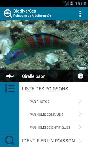 BiodiverSea - Poissons