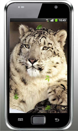 Snow Leopard HD live wallpaper