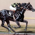 Racing horse Wallpaper icon