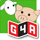 G4A: Dots & Boxes