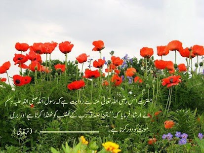 Best Hadees in Urdu Hadees-e-rasool in Urdu
