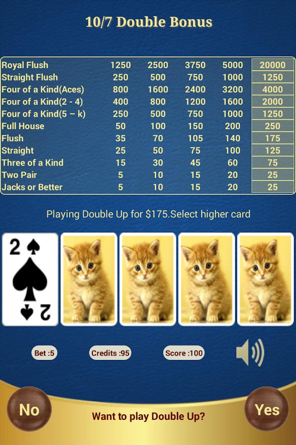 3 card poker 6 card bonus strategy pc gamse