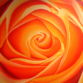 A rose for Mom by Kevin Adams - Painting All Painting