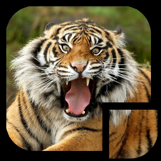 休閒App|老虎拼圖 LOGO-3C達人阿輝的APP