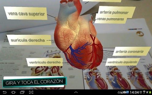 ARcuerpohumano- screenshot thumbnail
