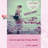 Novel You've Got Me From Hello