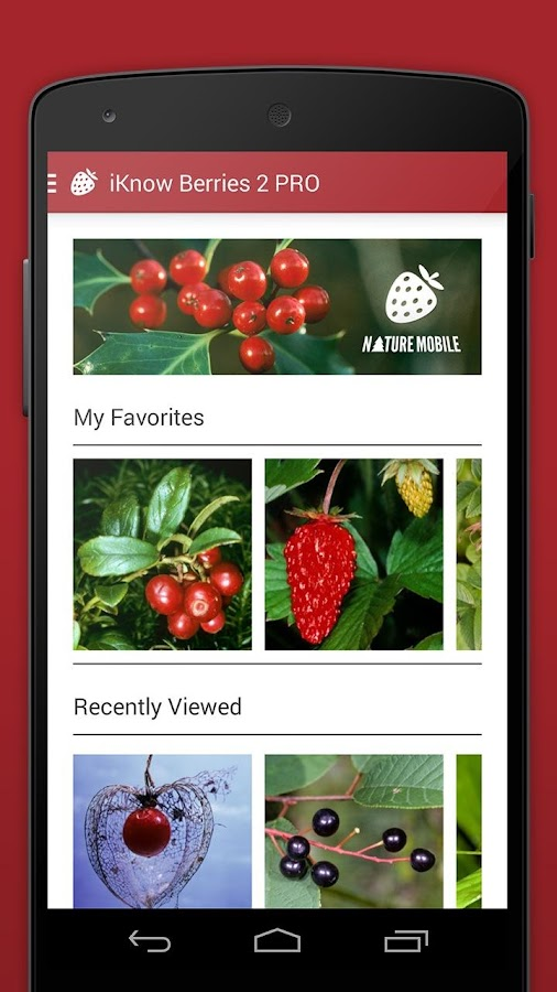 Wild Berries and Herbs 2 LITE- screenshot