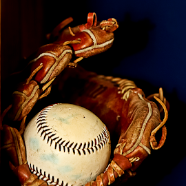 Let's Play Ball by Susan Farris - Sports & Fitness Baseball ( ball, fitness, baseball, sport, glove, game, leather,  )