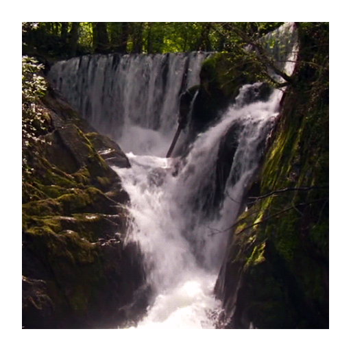 Forest Waterfall HD Live WP