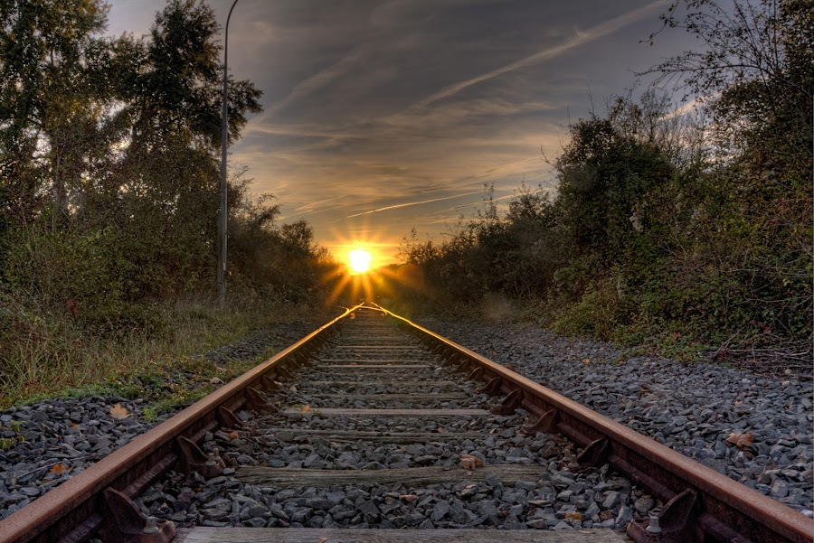 There's light at the and of the track by Marcel de Groot - Transportation Railway Tracks ( orange, railway, sundown, track, forest, light, , Earth, Light, Landscapes, Views )
