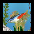 aniPet Freshwater Aquarium LWP icon