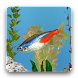 aniPet Freshwater Aquarium LWP icon