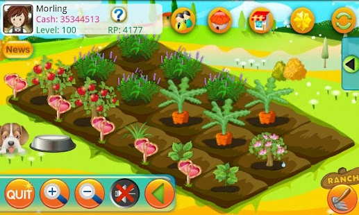 Papaya Farm HD - screenshot thumbnail