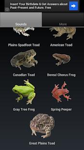 Frog Sounds - screenshot thumbnail