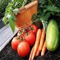 Vegetable Gardening 101 logo