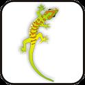 Gecko doo-dad blue/org logo