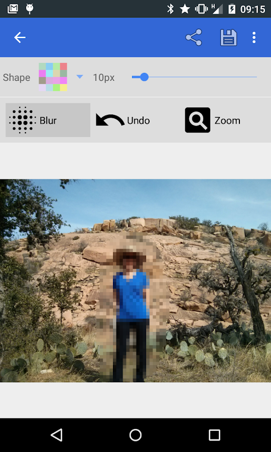 Pixelot: Pixelate, Blur Photos - screenshot