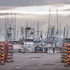 On A Winter's Day by Joel DeWaard - Transportation Boats ( marine, winter, crabbing, harbor, waiting, commercial fishing, fishing, marina, crabpots )