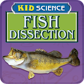 Kid Science: Fish Dissection