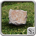 Sim Stone logo
