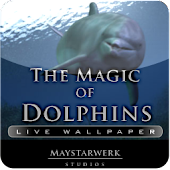 1 DOLPHINS Live Wallpaper